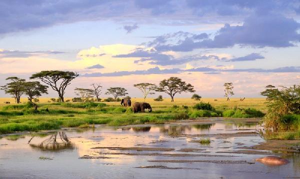 Safari féeries d'afrique 3*