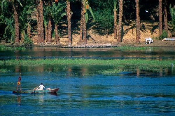 Rêverie sur le Nil & Aurora Bay Resort 4*